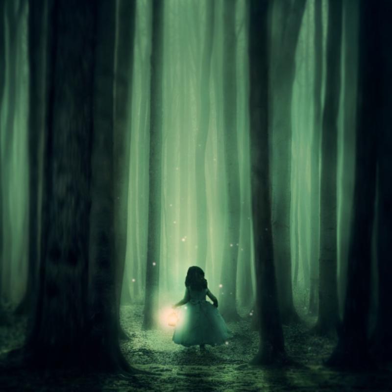 L'Ange de la forêt